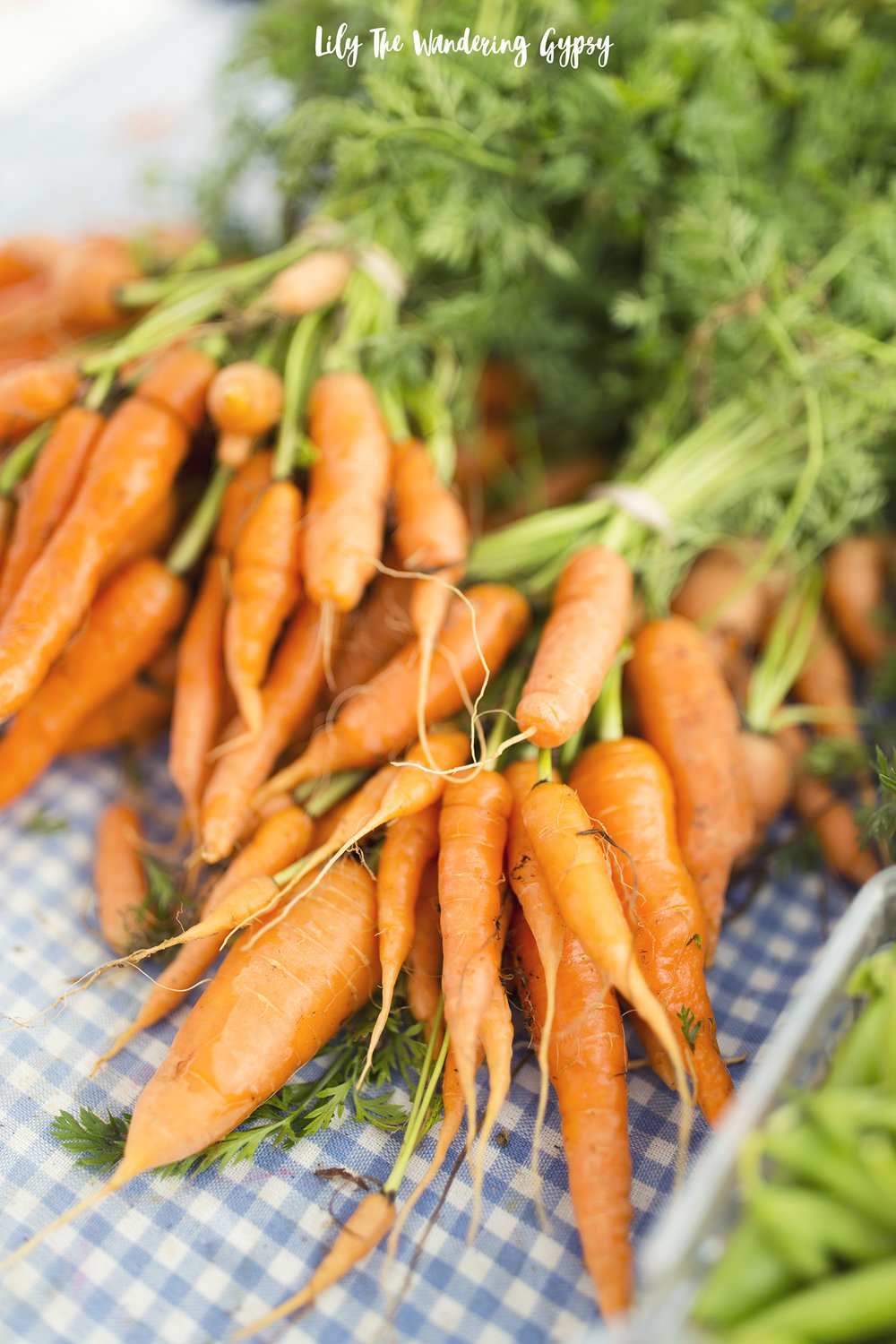 Organic Carrots From Countrysprout Organics