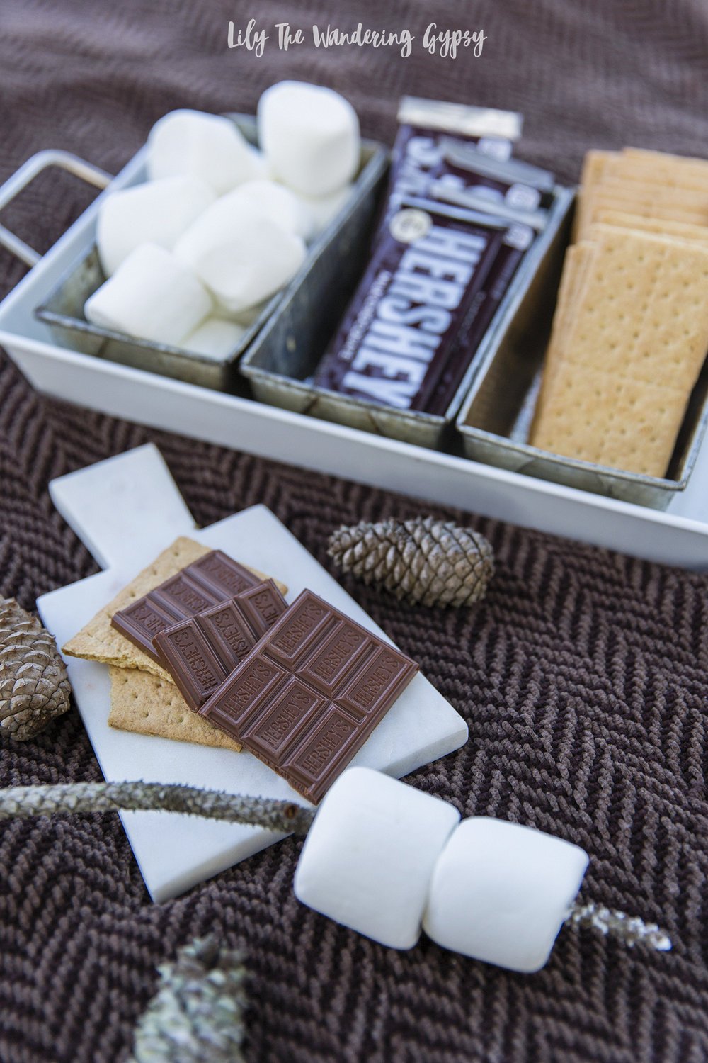 S'mores, Anyone?