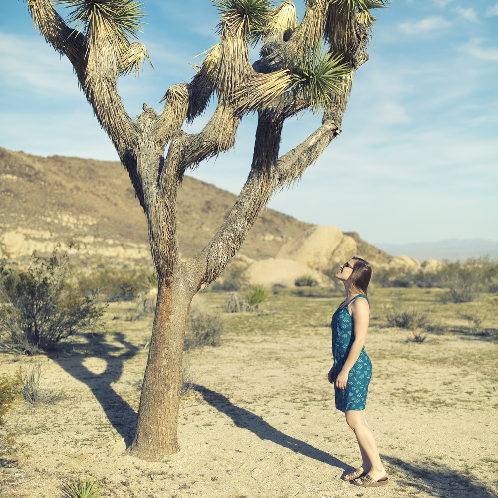 Joshua Tree National Park!