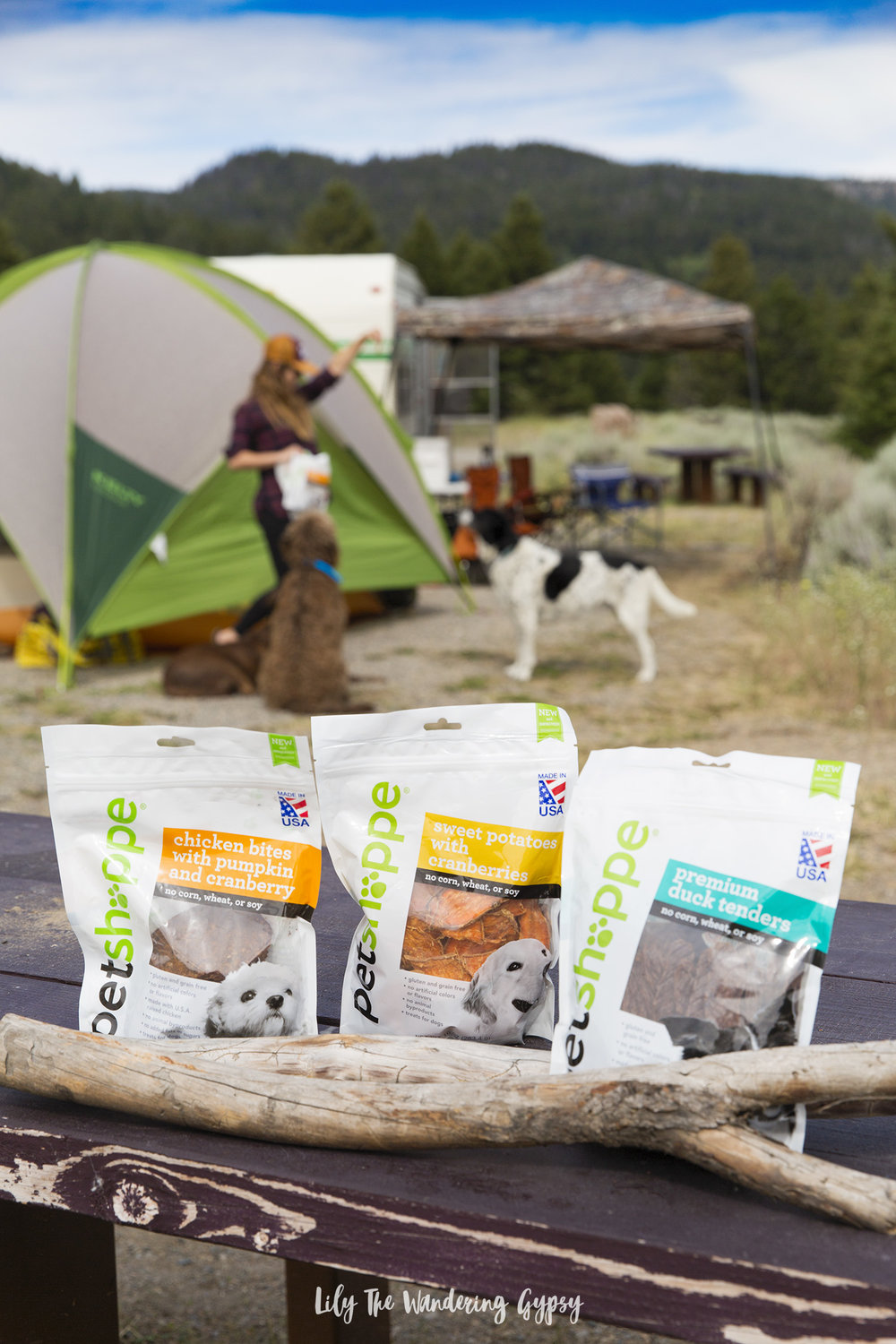 Camping With Dogs - Tips and Tricks - Walgreens #Petshoppe