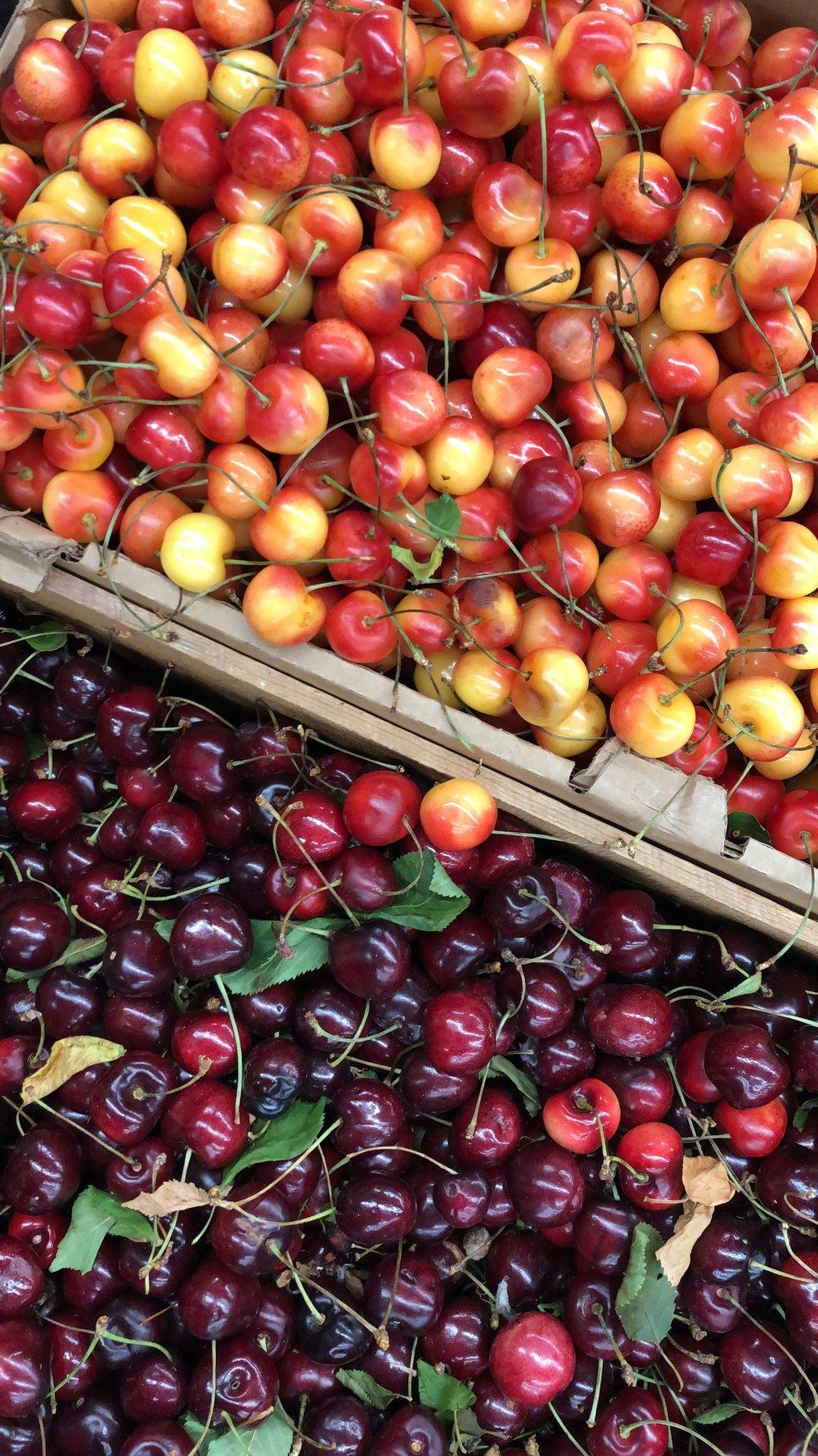 Montana Flathead Cherries