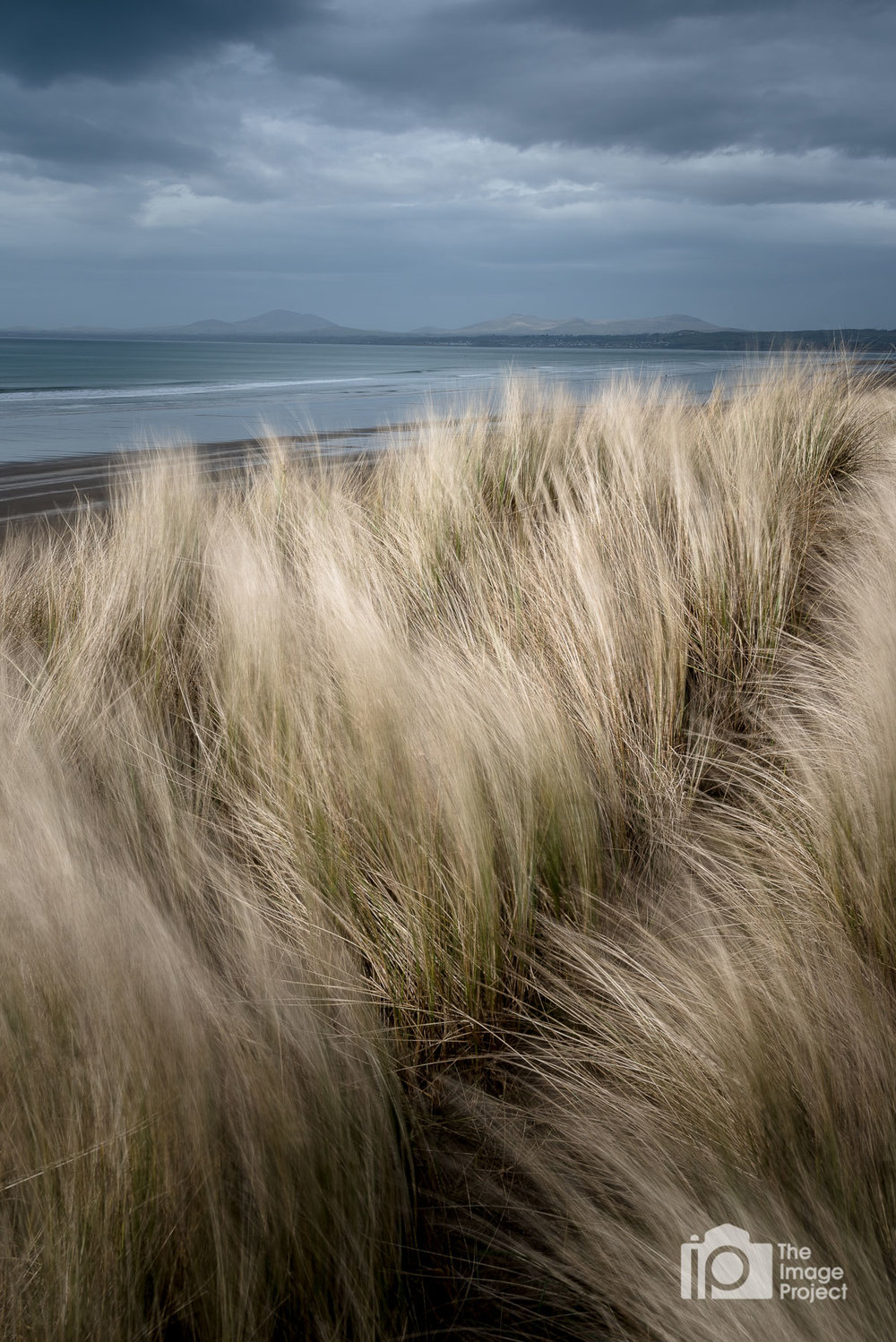 Grassy sand dunes softly lit by afternoon sun with mountains of Snowdonia in background, March 2018