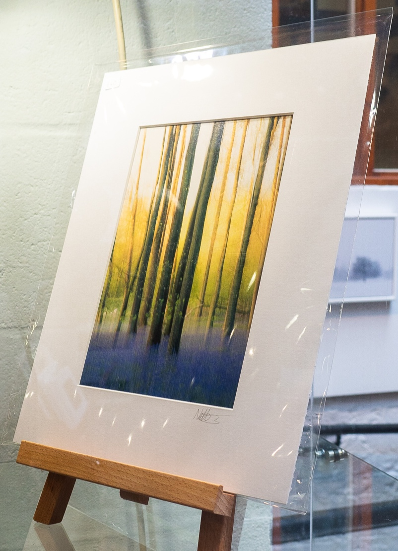 Example of window-mounted print