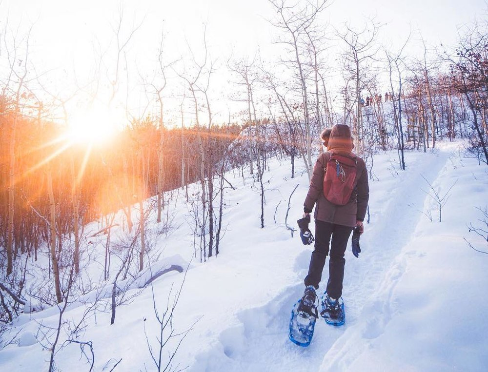 SNOWSHOEING - Spend an afternoon exploring the Yukon Forest Research Centre's rolling hills, scenic view points, and rustic cabins.Time: 2.25 hrsCost: $80 per person, includes tour guide, trail pass, and ski rental
