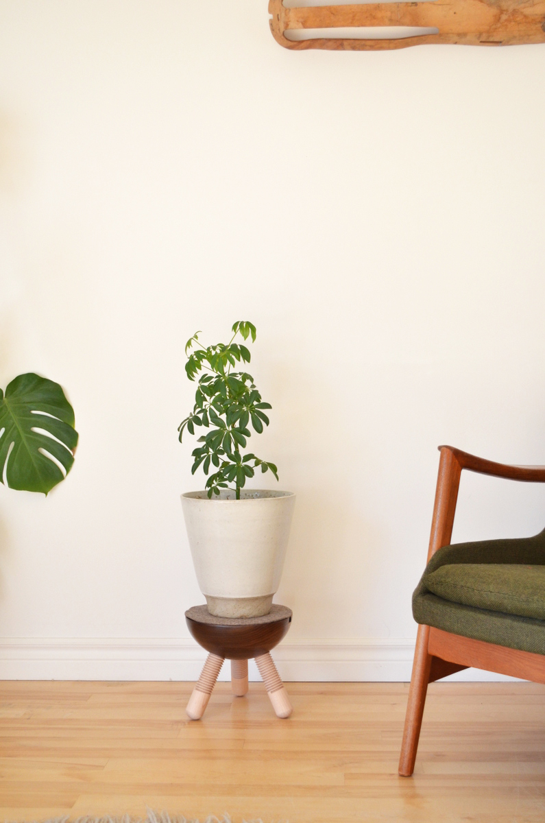knock plant stand Tyler Mckenzie.jpg