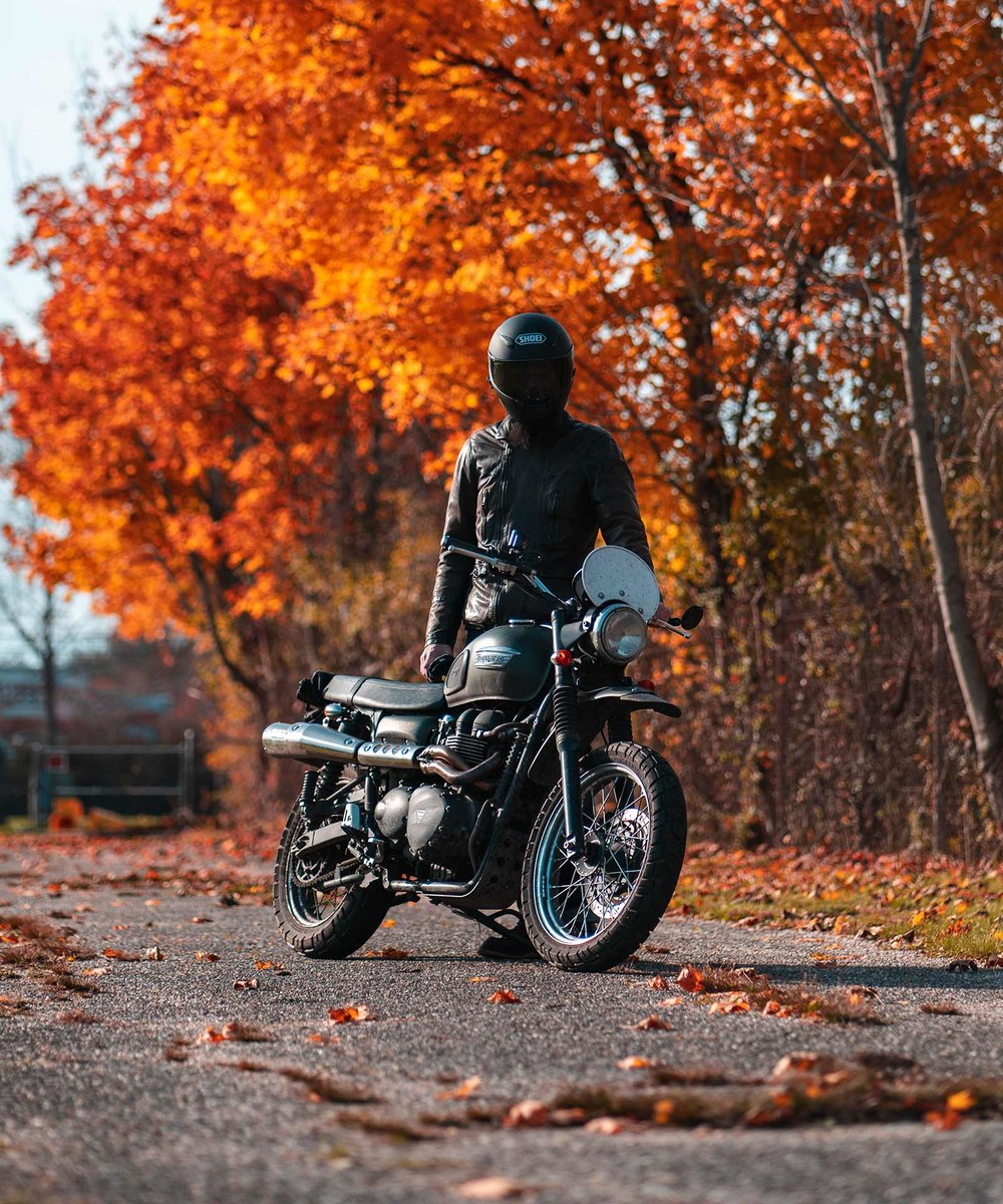 Triumph Scrambler 900 in the fall with leaves