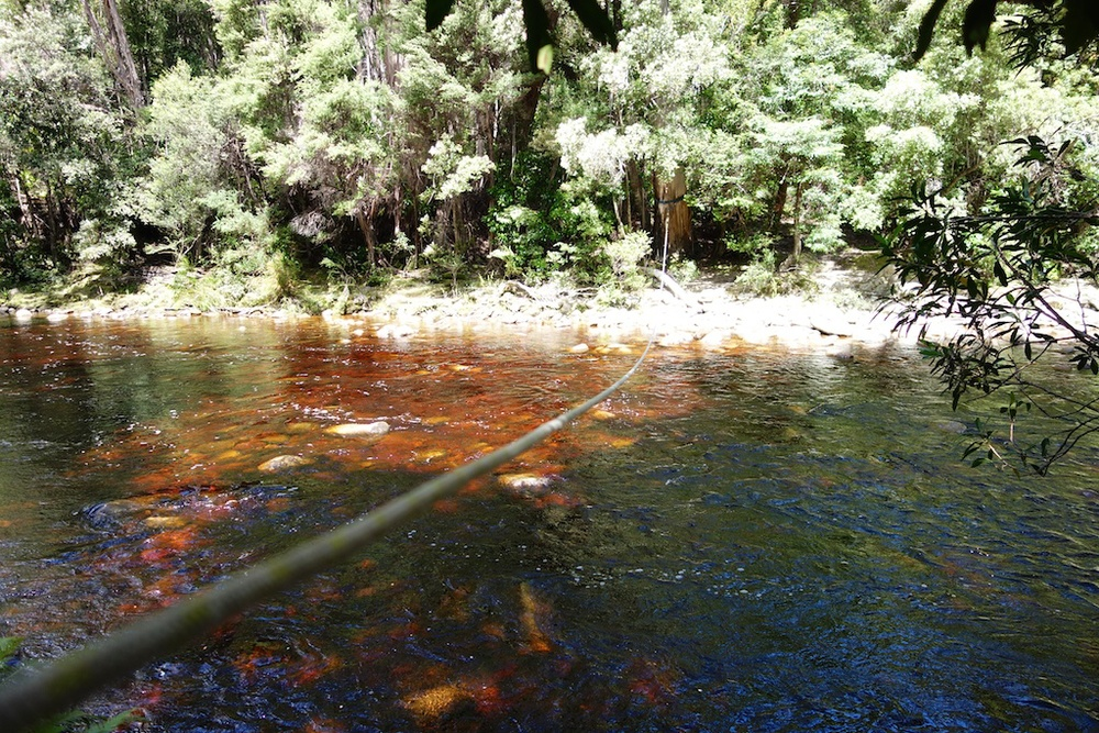The Louisa River crossing, just before arriving at our campsite