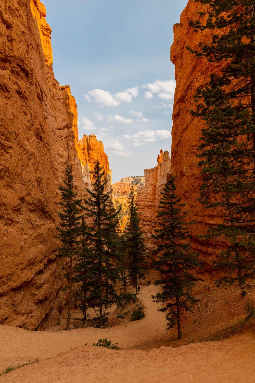 Hiking in the Hoodoos: Navajo Loop Trail
