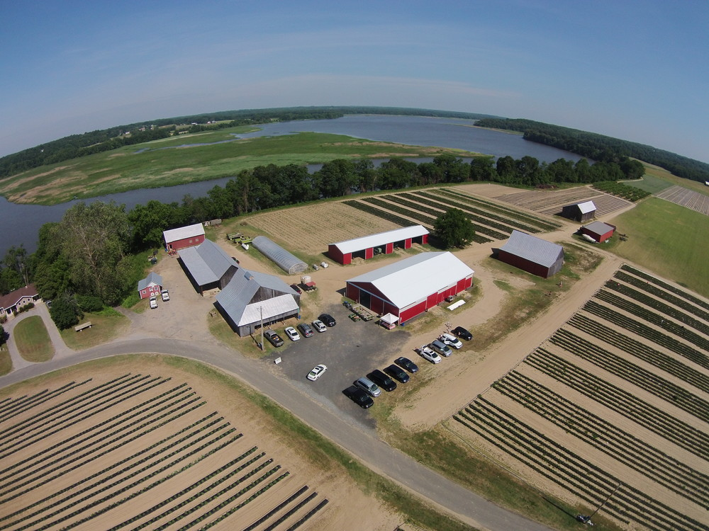 Thanks G. Scott Taulbee @ http://pixeloverhead.com for the aerial view of our u-pick patches.