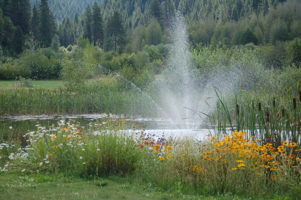 pond fountain.jpg