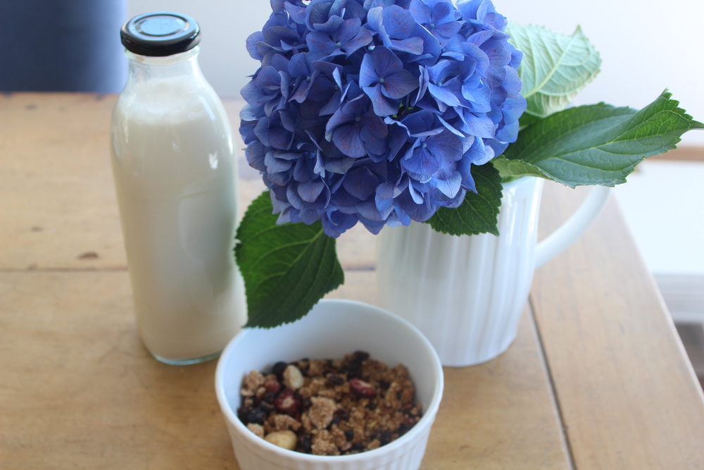 CREAMY ALMOND MILK - sugar free, calcium, protein, vegan, plant based, dairy free, gluten free, whole foods, no refined sugar, nut milk, recipe, easy, natural, recoveringraw.com, recoveringraw