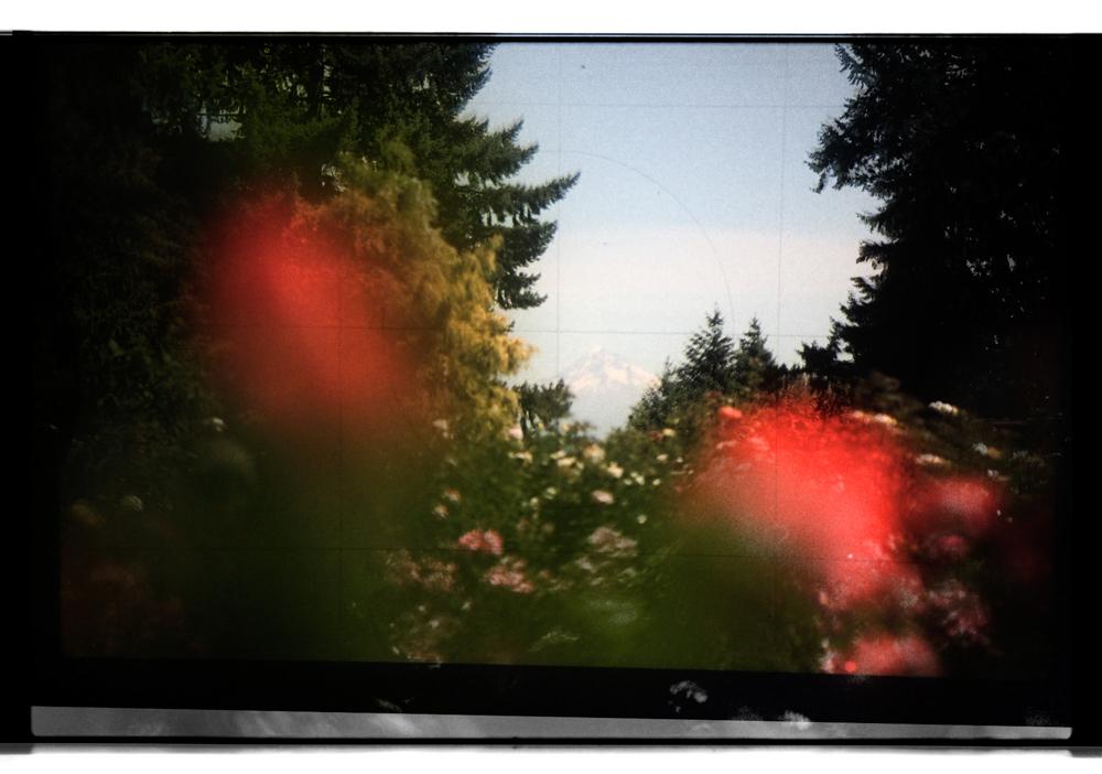 2016-0821-25 colorized.jpg