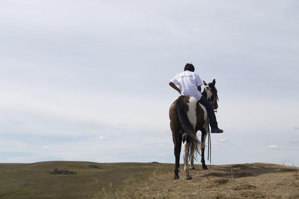DAPL Rider Hilltop.jpg