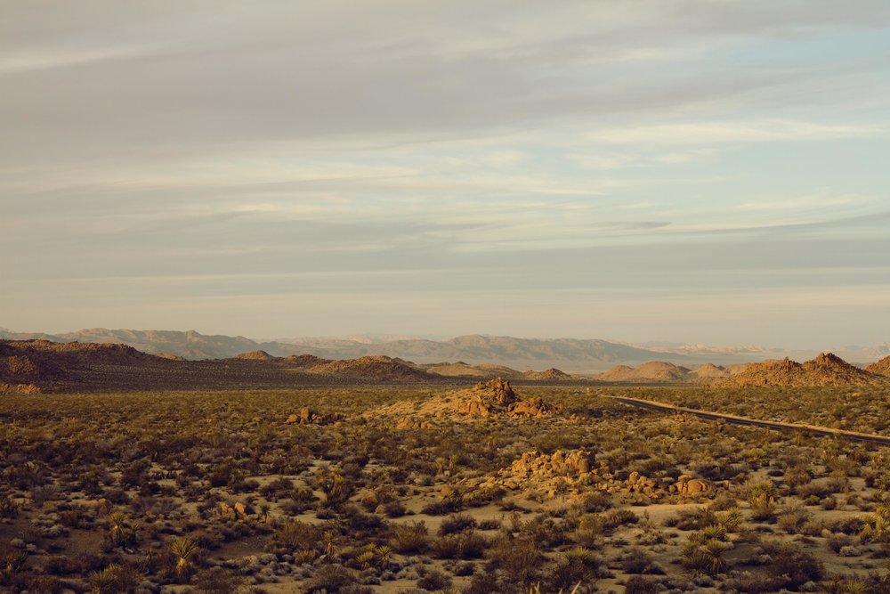 landscape+2.jpg