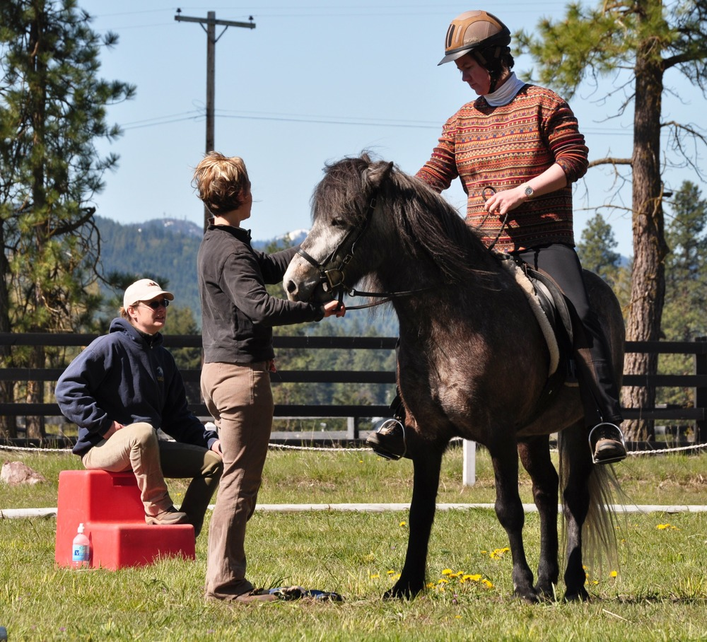 Click the image to view more photos of clinics hosted at Red Feather Ranch.