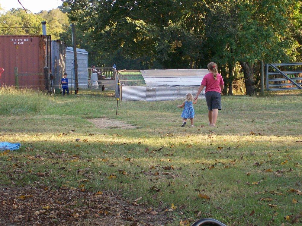 farm yard 9-07.jpg