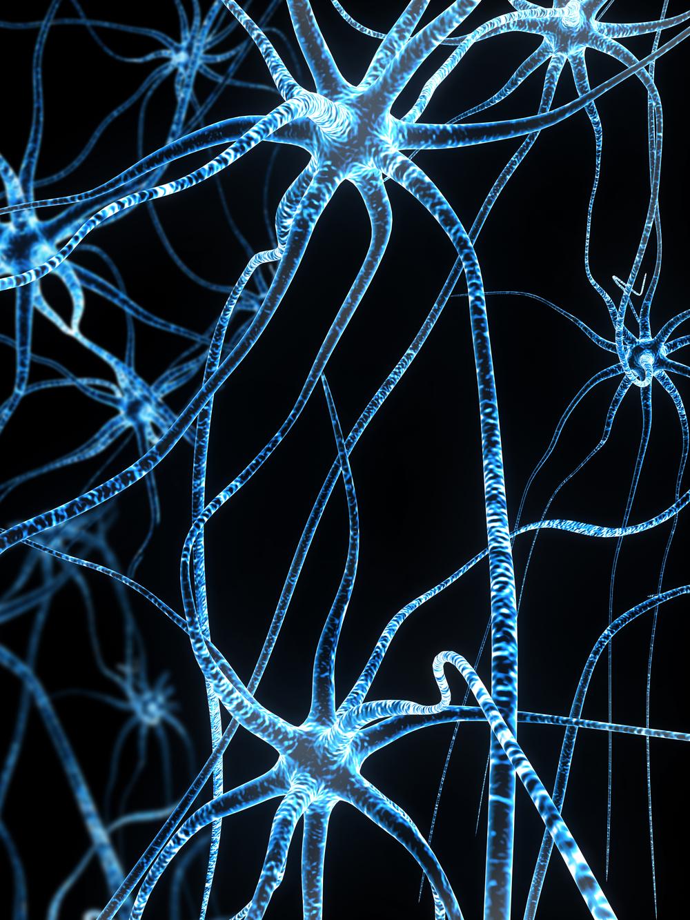 nerve fiber large.jpg