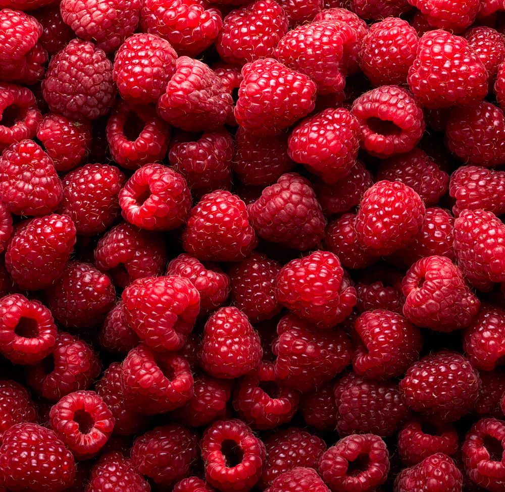 raspberries large.jpg