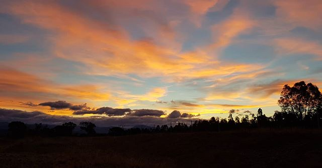 Sometimes the sunset in Canberra is so pretty you have to drive the long way home just to get a quick shot on the phone.  #sunset #allthecolours #canberra #pretty #landscape