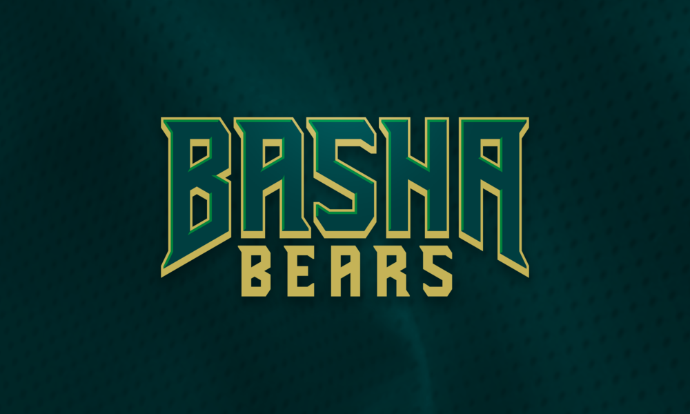 Basha Wordmark.png