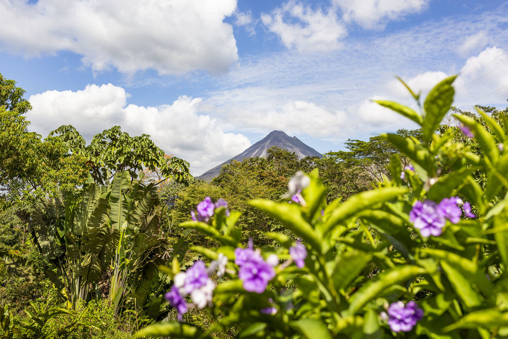 View of the Arenal Volcano from the Butterfly Conservatory in La Fortuna, Costa Rica.