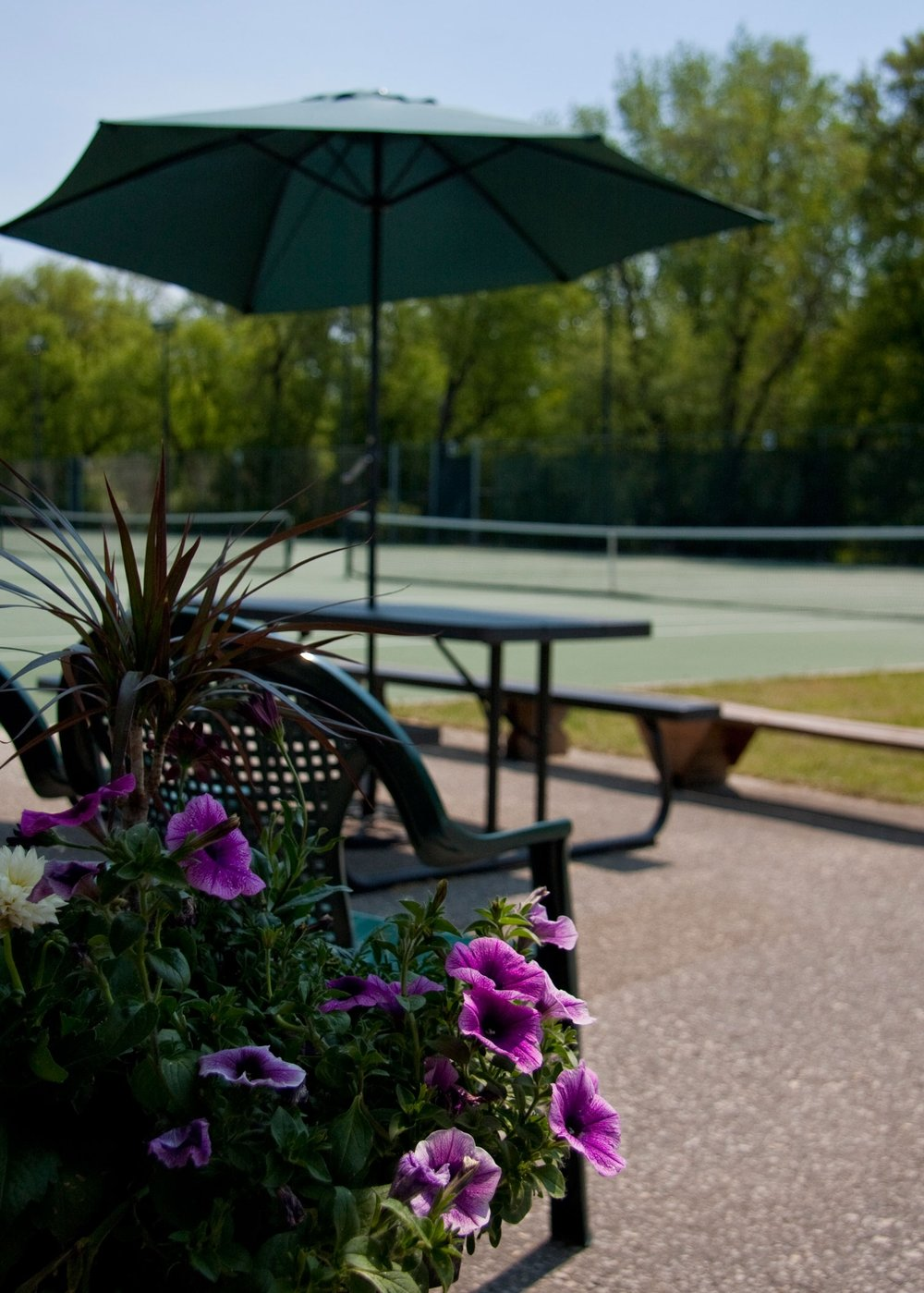 Winnipeg Lawn Tennis Club is a seasonal tennis facility with a large selection of activities including leagues, ladders, clinics, tournaments and casual play from May to October (weather permitting). - We have programs for players at all levels. Not sure what level you are? Consult with our Tennis Pro.