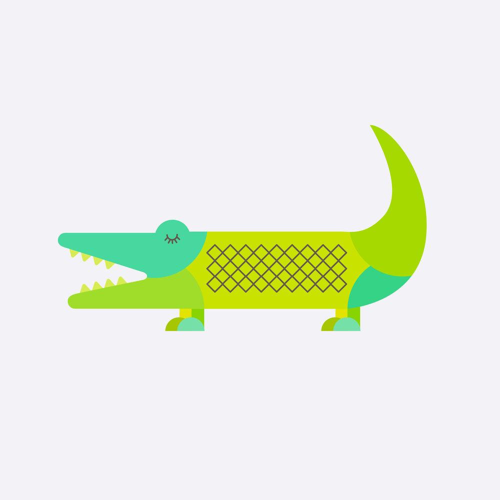 alligator-61.jpg