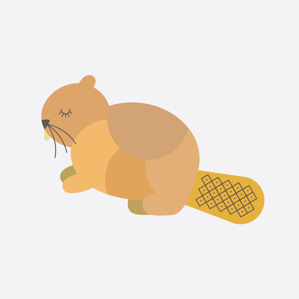 beaver-44.jpg