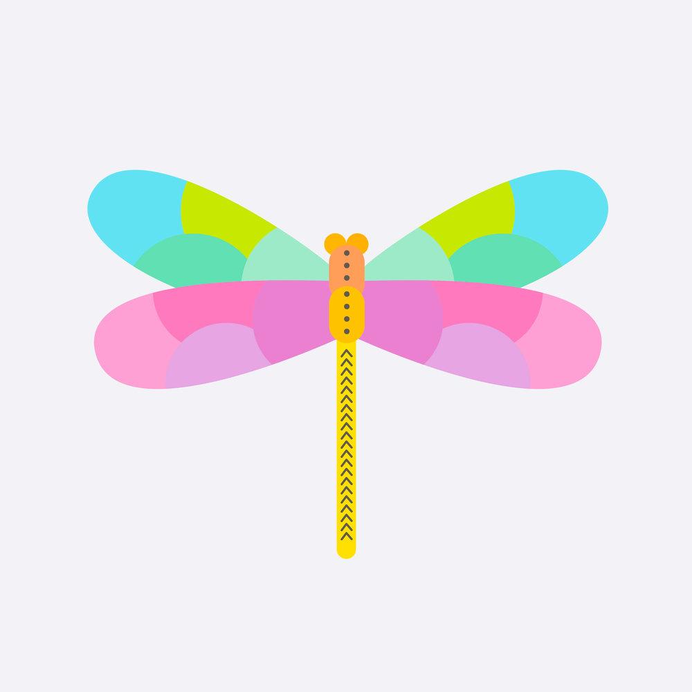 dragonfly-38.jpg