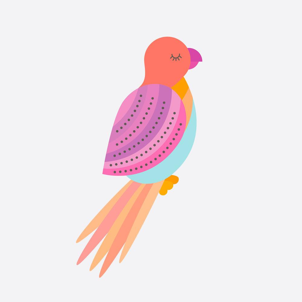 parrot-18.jpg
