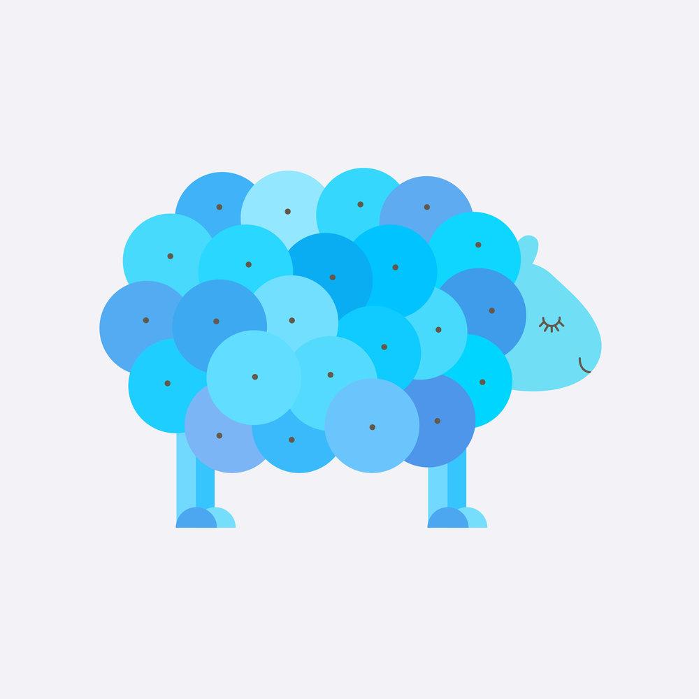 sheep-24.jpg