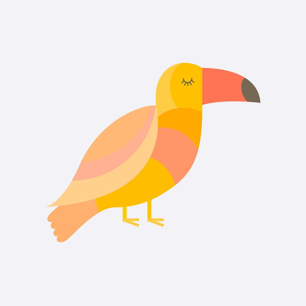 toucan-29.jpg