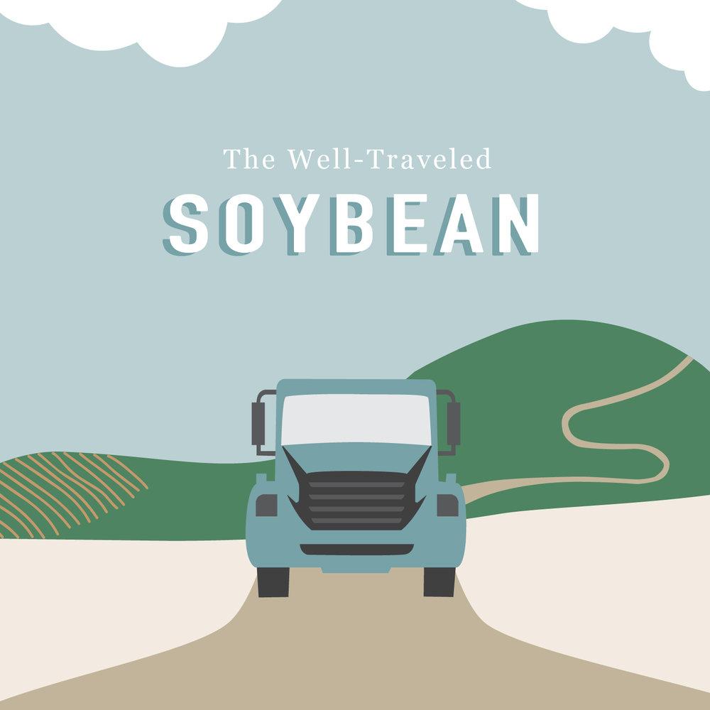 soybean_insta-02.jpg