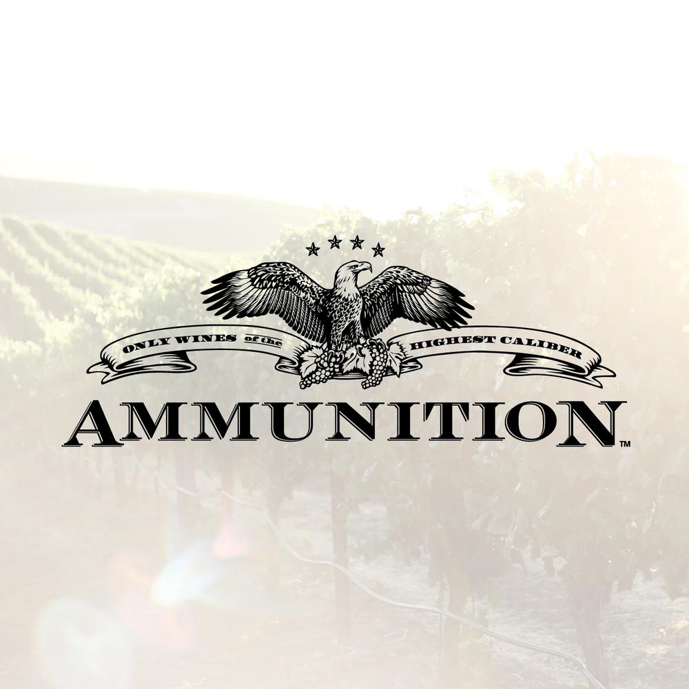 ammunition-01.png