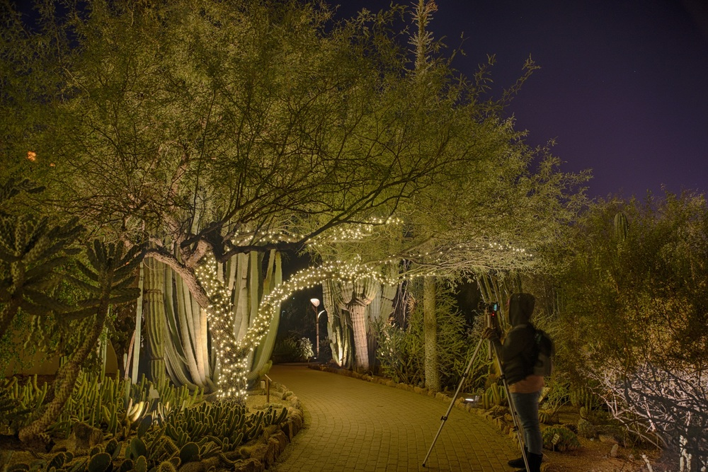 Phoenix Botanical Gardens, Dec 2014