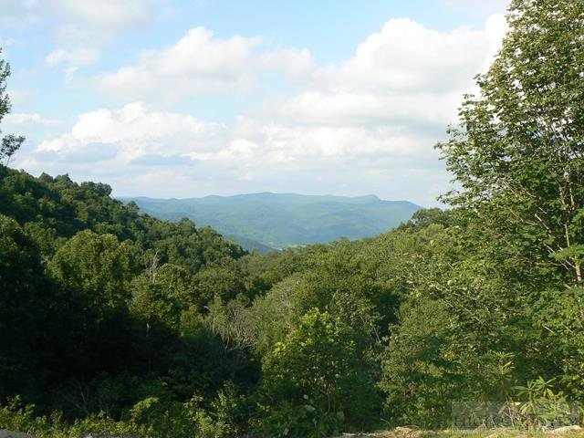 Lot #12 Hortons Blue Ridge.jpg