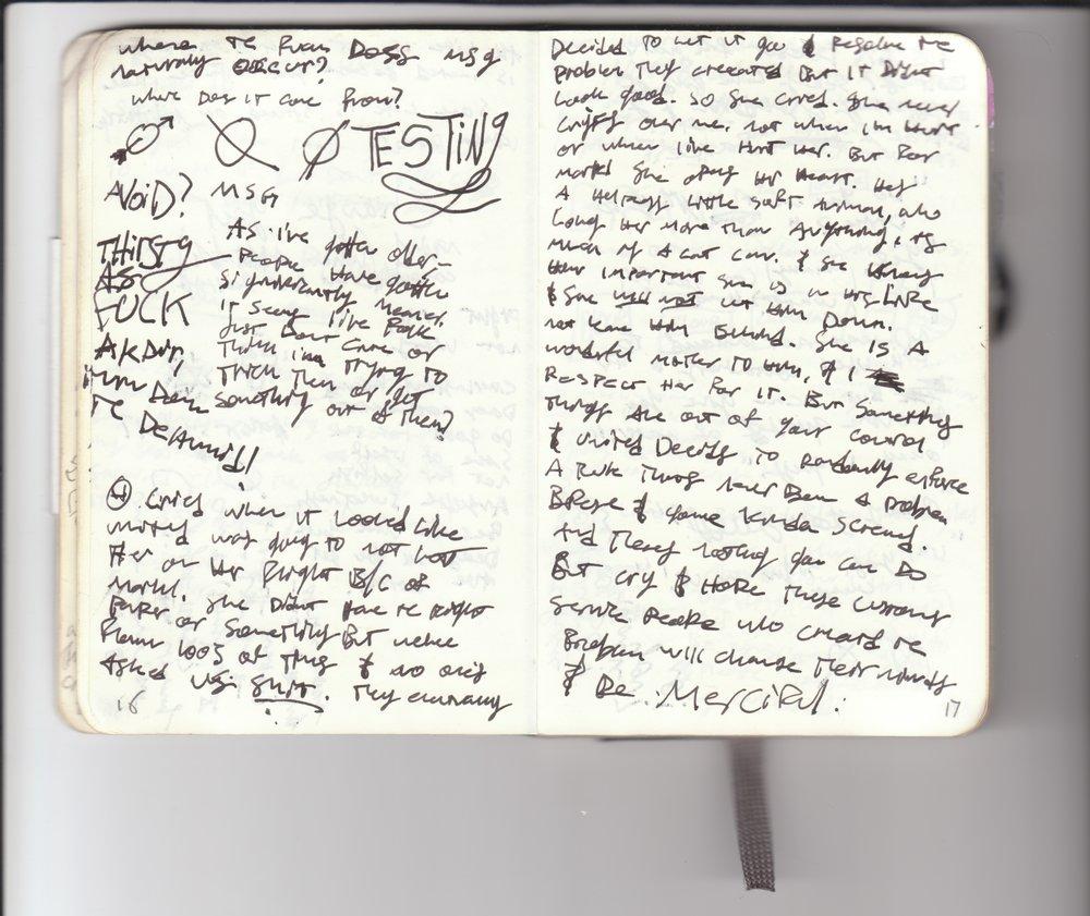 j12_Page_013.jpg