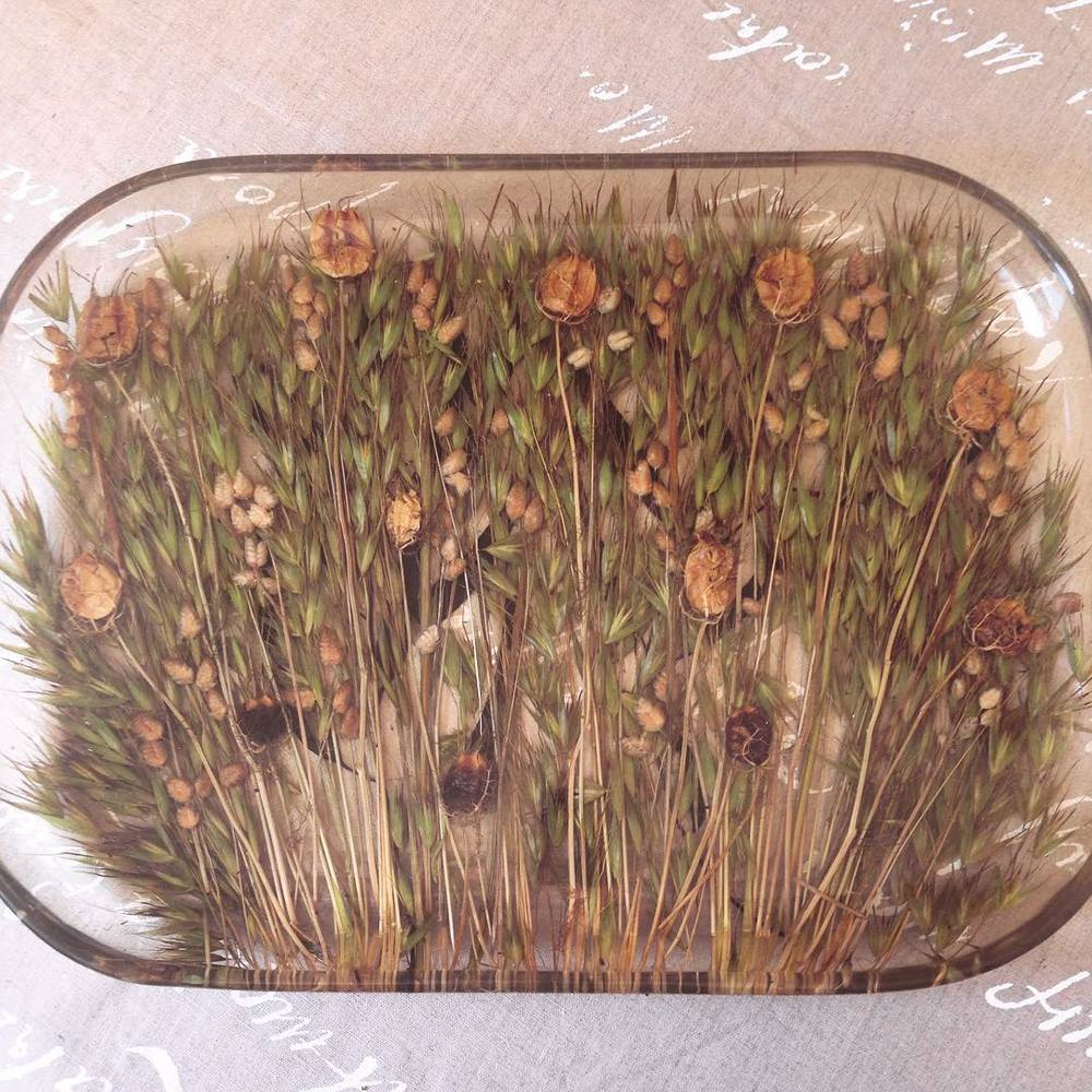 Totally in love with this #resin plate #want 😍💗😍 you can feel the flowers under the plastic 🌷🙈👏🏽👏🏽👏🏽 #istres #france but it's #madeinitaly
