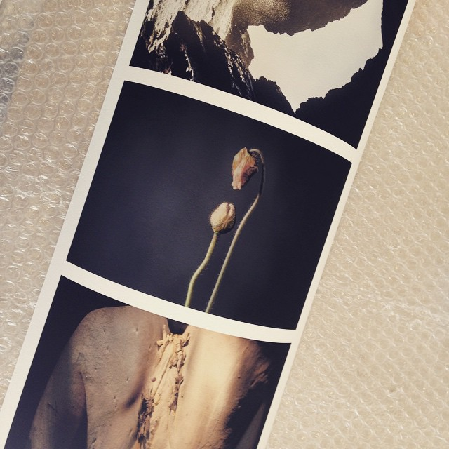 Testing testing one two @charingcrossphoto #artprints #photography #photographicart #whalesings 🐳📷 #charingcrossphoto