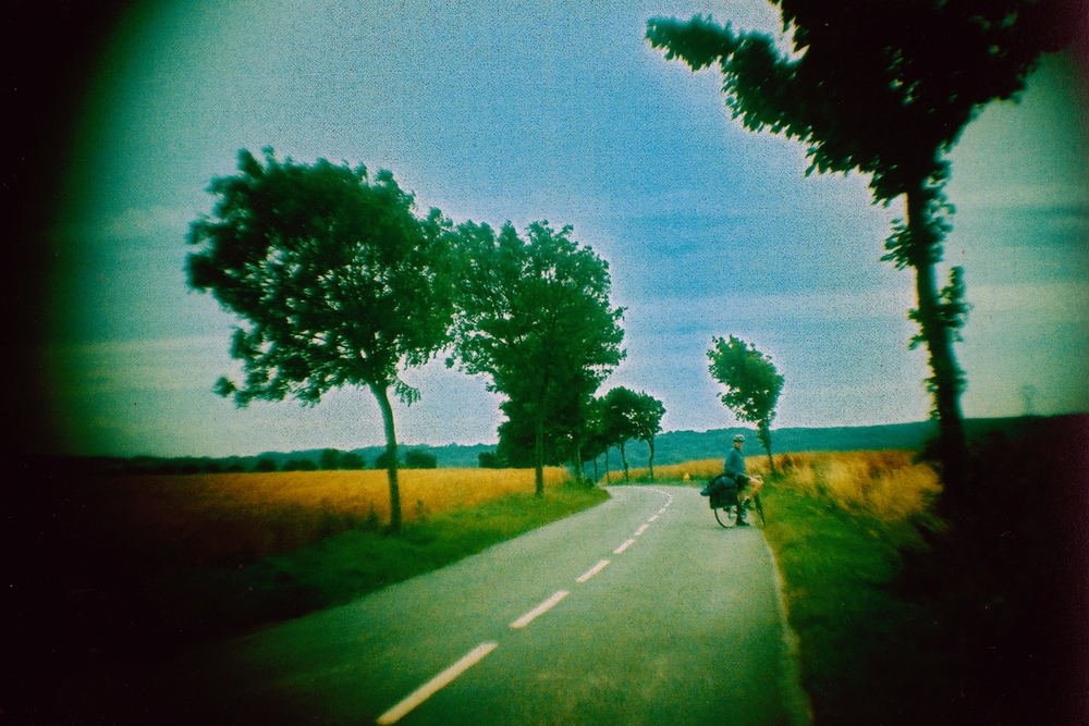 open road trees.jpg