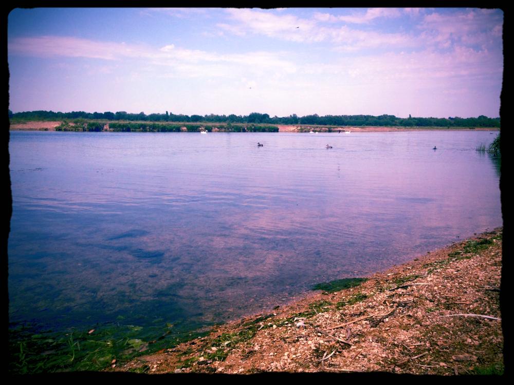 Oxford Port Meadow