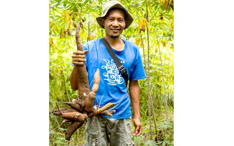 cassava-gallery-05.jpg