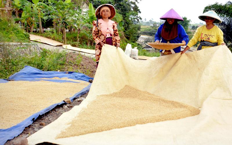 Rice-gallery-21.jpg