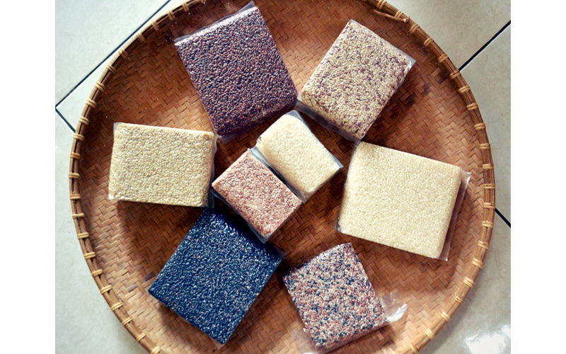Rice-gallery-22.jpg