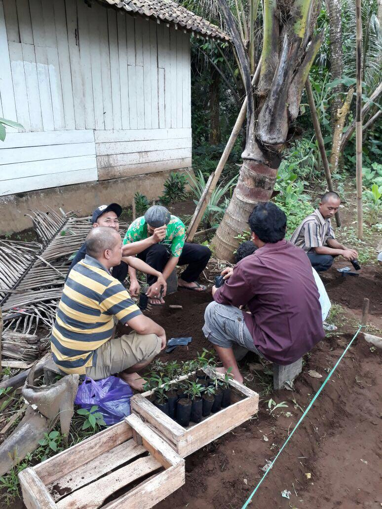Developing sustainable nursery.