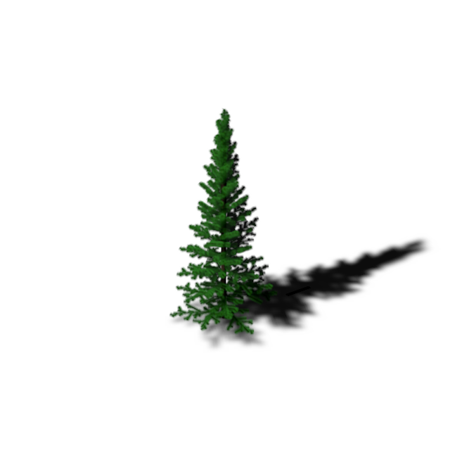 daily tree.png
