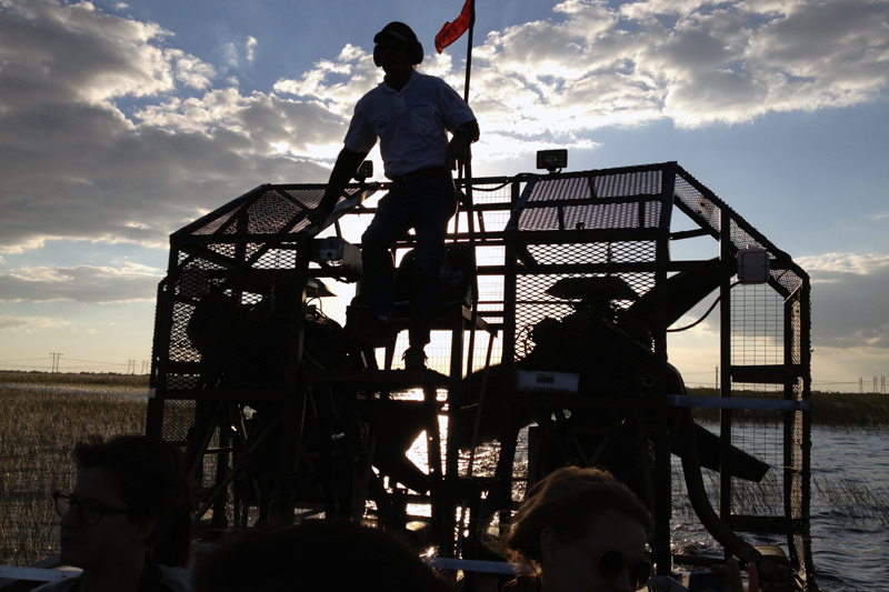The Everglades: : Air boat adventures!