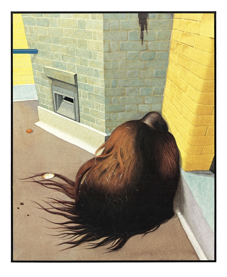 Image result for The zoo by Anthony Browne