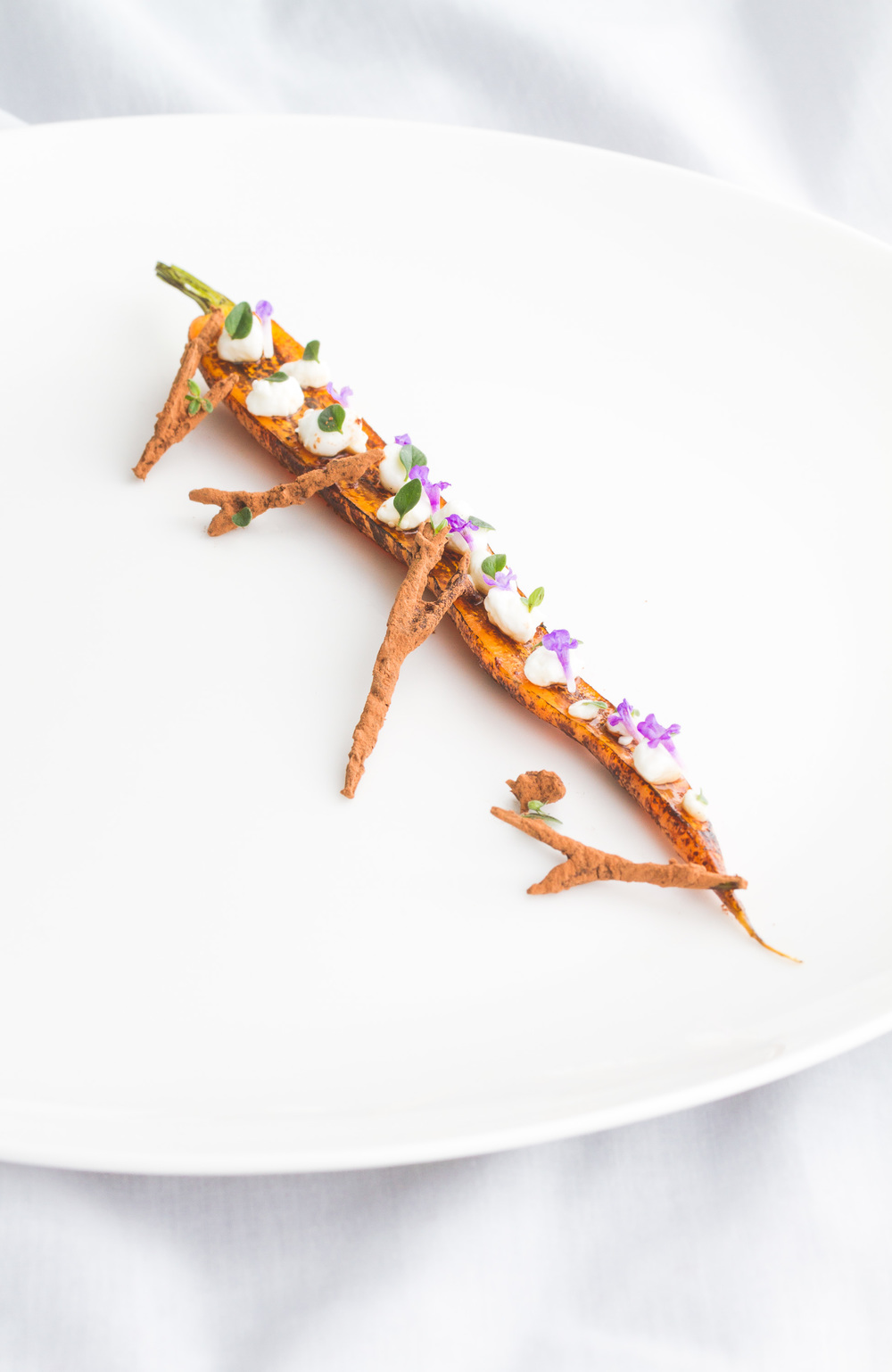 Honey glazed carrot, cottage cheese and chervil twigs