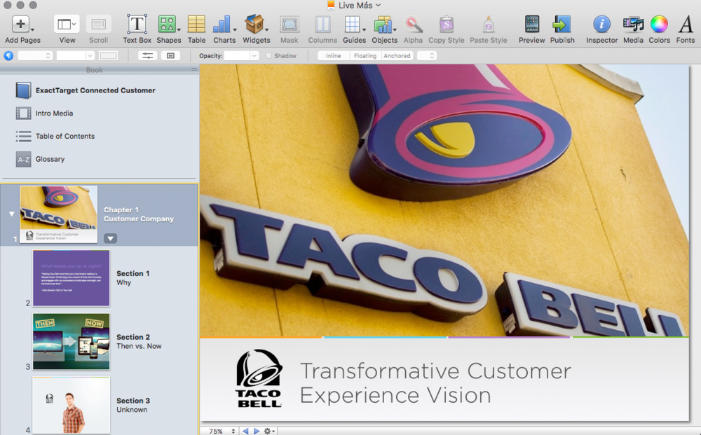 Live Màs Customer Journey in iBook Author